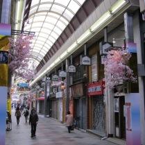 Side street near Nishiki