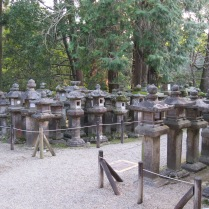 Even more lanterns! (Nara)