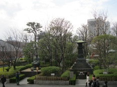 View of the garden on the side