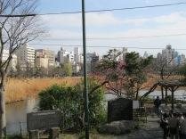 Pond in Ueno Park