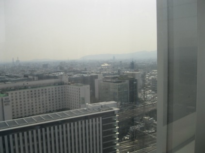 View from the top of Kyoto Station - none of the charm of the city really visible.