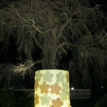 Prayers are written on the cherry blossom cut-outs which are then pasted on the lanterns
