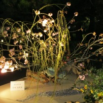 Another ikebana display at the Hannatouro
