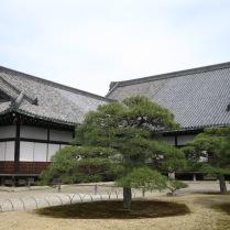 Corner Nijo Palace