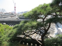 Hanok roof - and crane - view