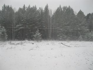 Snowy out of Irkutsk