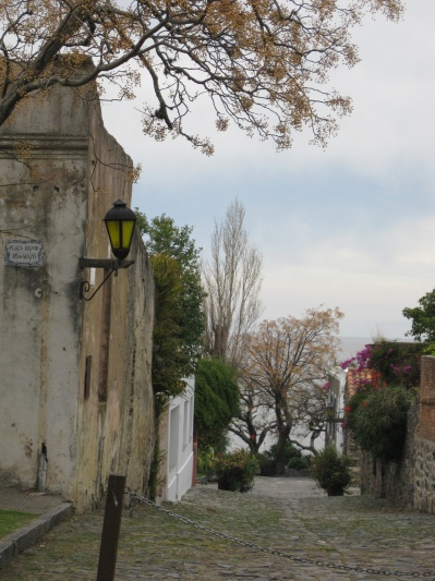 Another beautiful Colonia street