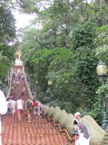 The 306 stairs to Wat Doi Suthep