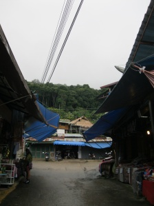 The Hmong village