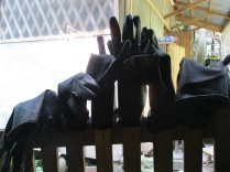 Dyers' gloves