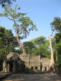 Approaching Ta Prohm